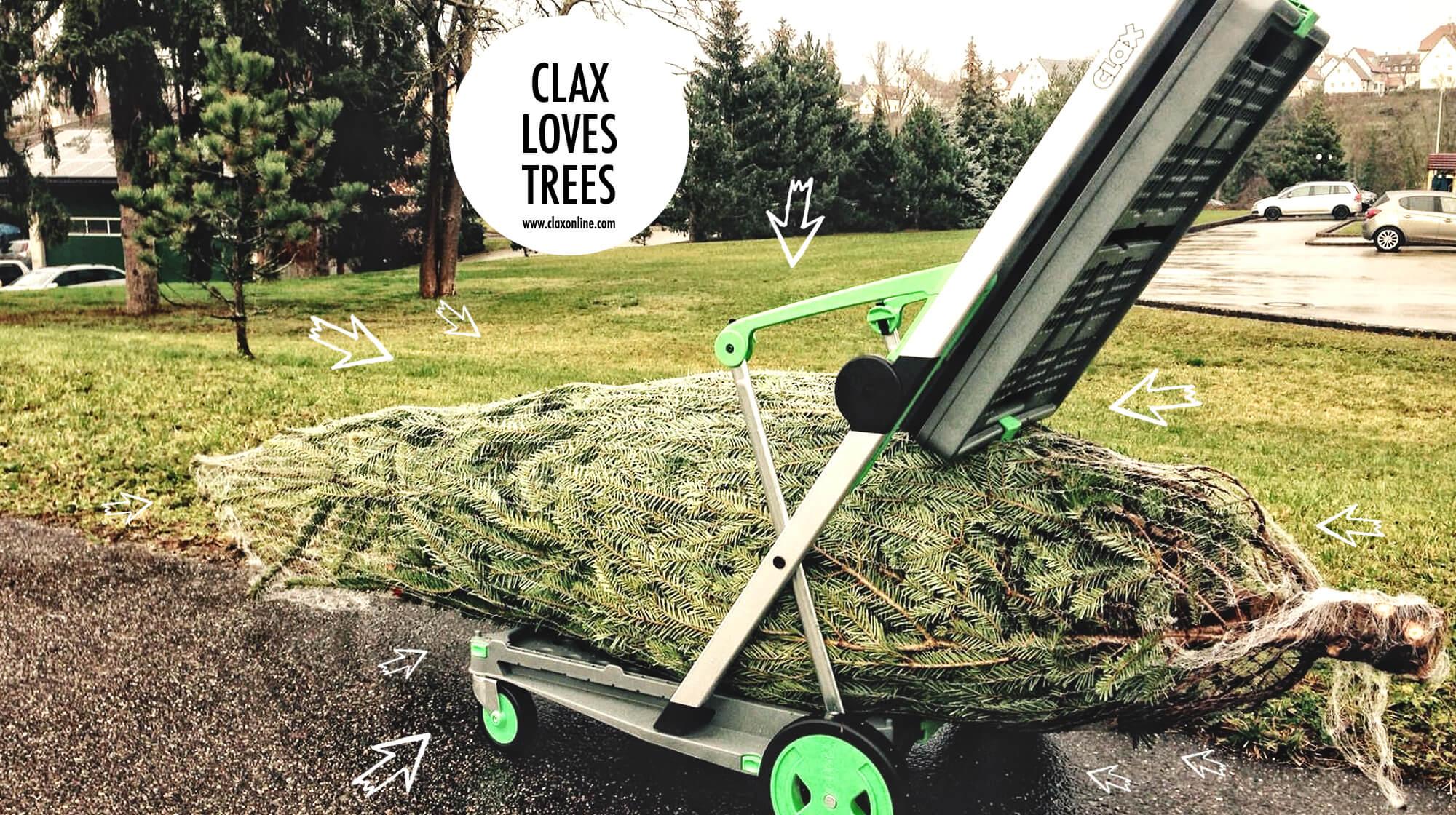 7_clax_love_trees