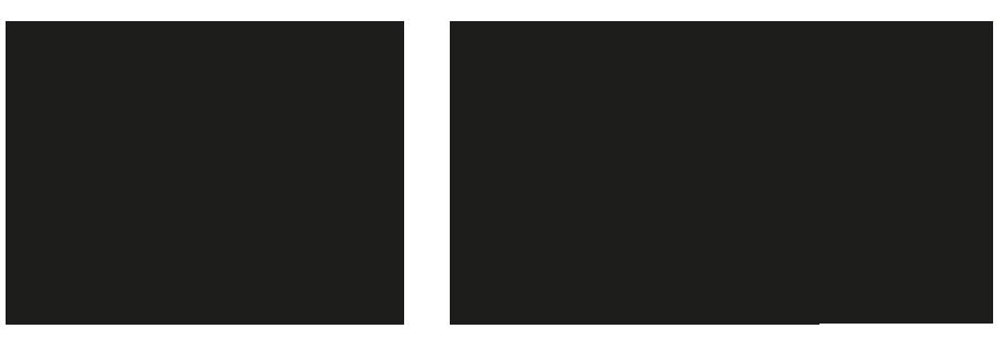 schieben_DE